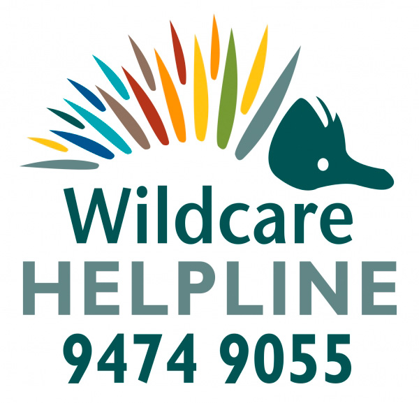 wildcare helpline logo