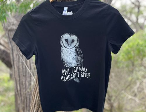 New Owl Friendly T-Shirts Available Now